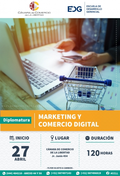 DIPLOMATURA EN MARKETING Y COMERCIO DIGITAL